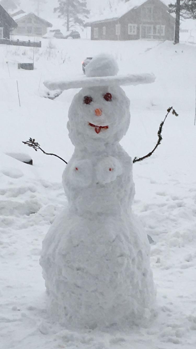 billede af snepige