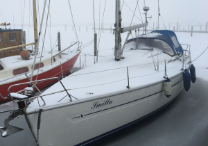 Billede af Smilla som ligger i is og med vinterfrakken på